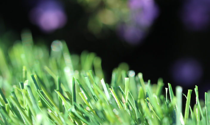 Artificial Grass Evergreen-54 Natural Artificial Grass Baltimore Maryland