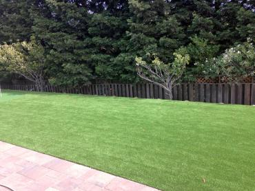 Artificial Grass Photos: Artificial Grass Berwyn Heights Maryland  Landscape  Pavers
