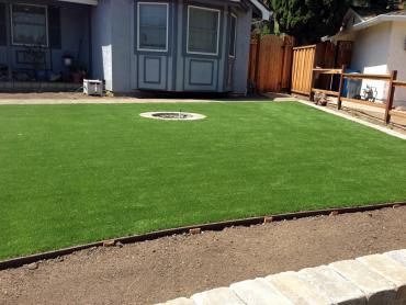 Artificial Grass Fort Meade Maryland  Landscape  Back Yard artificial grass