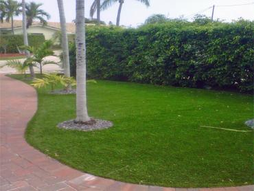 Artificial Grass Kingsville Maryland  Landscape  Back Yard artificial grass