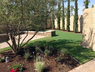 Artificial Grass Photos: Artificial Grass Mays Chapel Maryland  Landscape