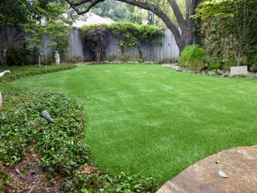 Artificial Grass Photos: Artificial Grass Savage Maryland  Landscape  Commercial Landscape