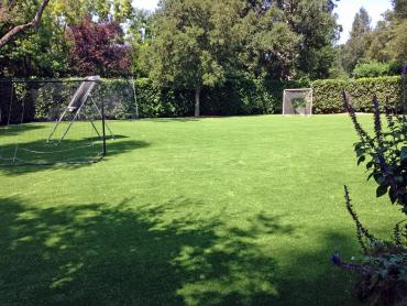 Artificial Grass Photos: Artificial Grass Sports Applications Cockeysville Maryland
