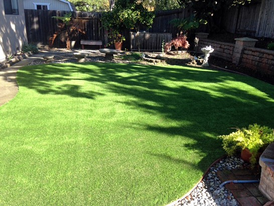 Artificial Grass Photos: Artificial Pet Grass North Chevy Chase Maryland Installation