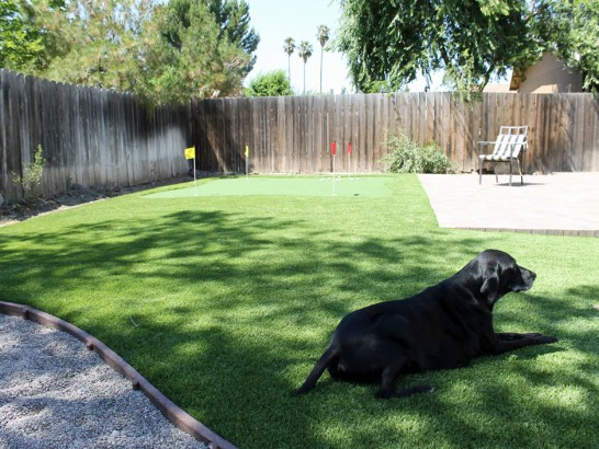 Artificial Grass Photos: Artificial Pet Grass Walker Mill Maryland Installation
