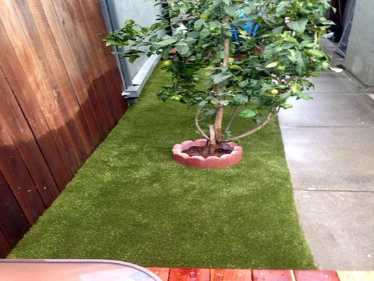 Artificial Grass Photos: Artificial Pet Turf Damascus Maryland Installation