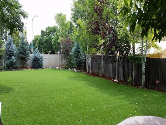Artificial Grass Photos: Artificial Pet Turf Galesville Maryland for Dogs  Back Yard