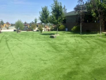 Artificial Grass Photos: Artificial Pet Turf Mays Chapel Maryland for Dogs  Front