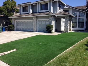 Artificial Grass Photos: Artificial Turf Garrison Maryland  Landscape  Back Yard