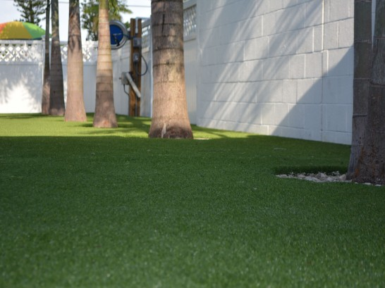 Artificial Grass Photos: Artificial Turf Installation District Heights, Maryland Landscape Design, Commercial Landscape