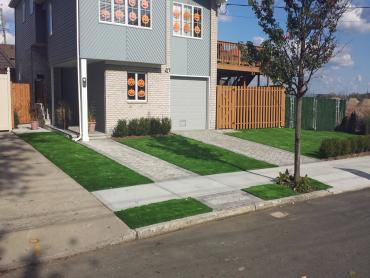 Artificial Grass Photos: Artificial Turf Rossville Maryland  Landscape  Swimming Pools