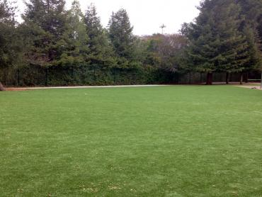 Artificial Grass Photos: Artificial Turf Spencerville Maryland  Landscape