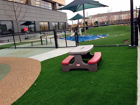 Artificial Grass Photos: Artificial Turf Wheaton Maryland  Kids Safe  Front Yard