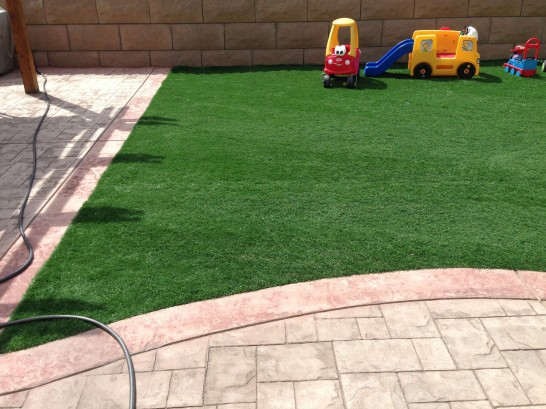 Artificial Grass Photos: Fake Grass Carpet Silver Hill, Maryland Design Ideas, Beautiful Backyards