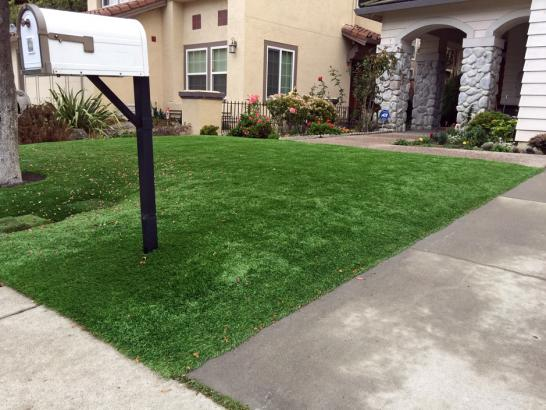 Artificial Grass Photos: Fake Grass North Brentwood Maryland  Landscape  Commercial