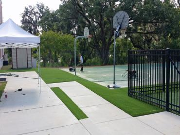 Artificial Grass Photos: Fake Grass Sports Fields Owings Mills Maryland  Swimming