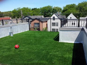 Artificial Grass Photos: Fake Pet Grass Middle River Maryland Installation
