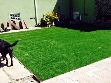 Artificial Grass Photos: Fake Pet Turf Beltsville Maryland Installation  Front Yard