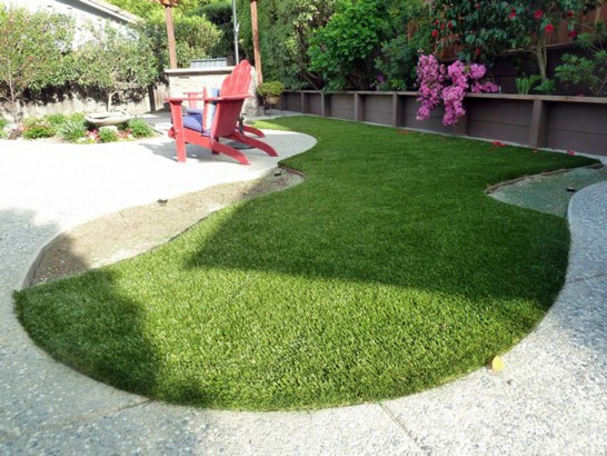 Artificial Grass Photos: Fake Pet Turf Darlington Maryland Installation