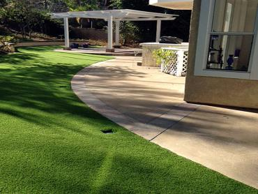 Artificial Grass Photos: Fake Pet Turf Severn Maryland for Dogs
