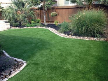 Artificial Grass Photos: Fake Pet Turf Tolchester Maryland for Dogs  Back Yard
