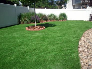 Fake Turf Linthicum Maryland  Landscape artificial grass
