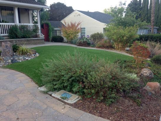 Artificial Grass Photos: Fake Turf Mount Airy Maryland Lawn  Back Yard