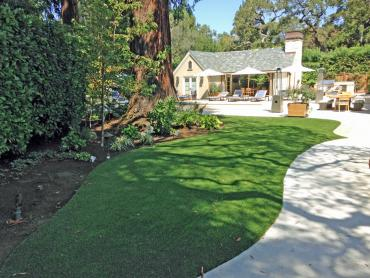 Artificial Grass Photos: Fake Turf Owings Mills Maryland  Landscape  Back Yard