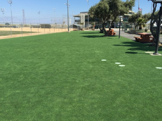 Fake Turf Potomac, Maryland Landscape Design, Parks artificial grass