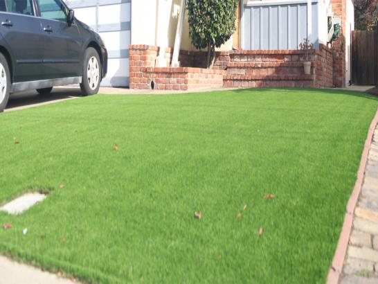 Artificial Grass Photos: Fake Turf Silver Spring Maryland  Landscape  Back Yard