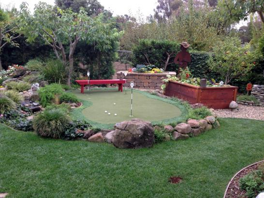 Artificial Grass Photos: Golf Putting Greens Chester Maryland Synthetic Grass   Summer