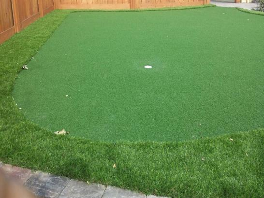 Artificial Grass Photos: Golf Putting Greens Kettering Maryland Synthetic Grass  Back