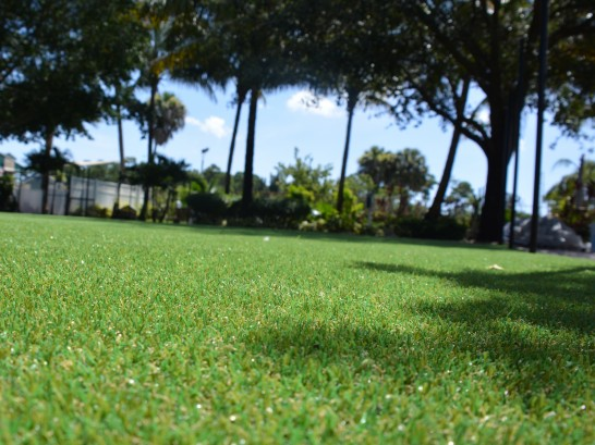 Artificial Grass Photos: How To Install Artificial Grass Havre de Grace, Maryland Backyard Deck Ideas, Recreational Areas