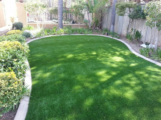 Artificial Grass Photos: How To Install Artificial Grass Martins Additions, Maryland Landscaping Business