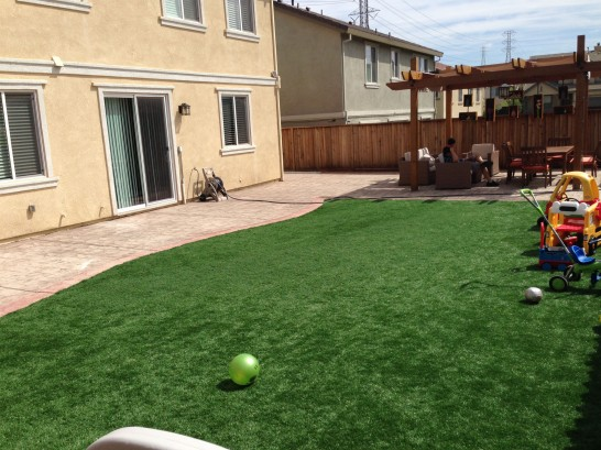 Artificial Grass Photos: Lawn Services Andrews AFB, Maryland Home And Garden, Small Backyard Ideas