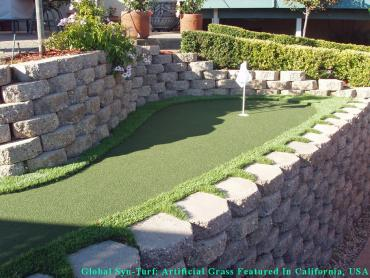 Putting Greens Baltimore Highlands Maryland Artificial Turf artificial grass