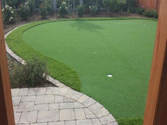 Artificial Grass Photos: Putting Greens East Riverdale Maryland Fake Grass  Back Yard