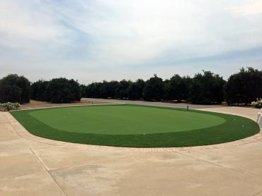 Artificial Grass Photos: Putting Greens Edesville Maryland Synthetic Grass  Back Yard