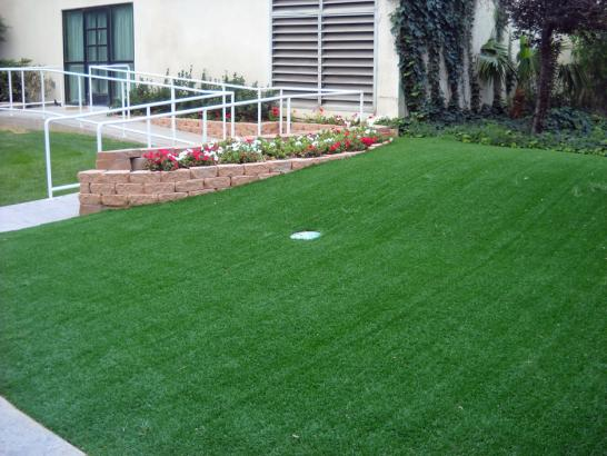 Artificial Grass Photos: Putting Greens Largo Maryland Fake Grass  Front Yard