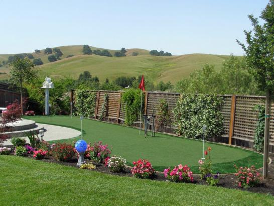 Artificial Grass Photos: Putting Greens Queenstown Maryland Artificial Grass  Front