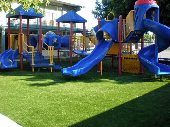 Artificial Grass Photos: Synthetic Grass Forest Glen Maryland Playgrounds  Back Yard