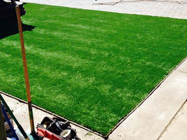 Artificial Grass Photos: Synthetic Grass Georgetown Maryland  Landscape  Back Yard