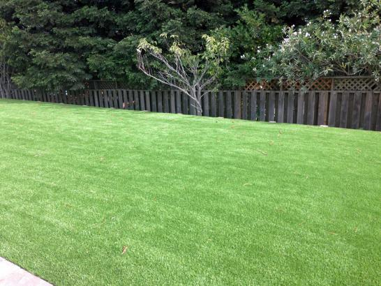 Artificial Grass Photos: Synthetic Grass Selby-on-the-Bay Maryland Lawn  Commercial