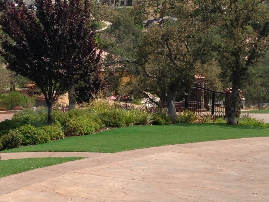 Artificial Grass Photos: Synthetic Grass Washington Grove Maryland Lawn