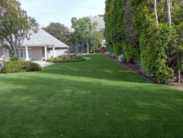 Artificial Grass Photos: Synthetic Pet Grass Bel Air South Maryland Installation  Back