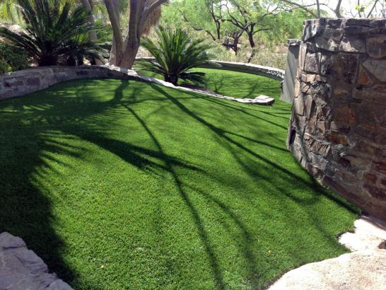 Artificial Grass Photos: Synthetic Pet Grass Stevensville Maryland Installation  Commercial