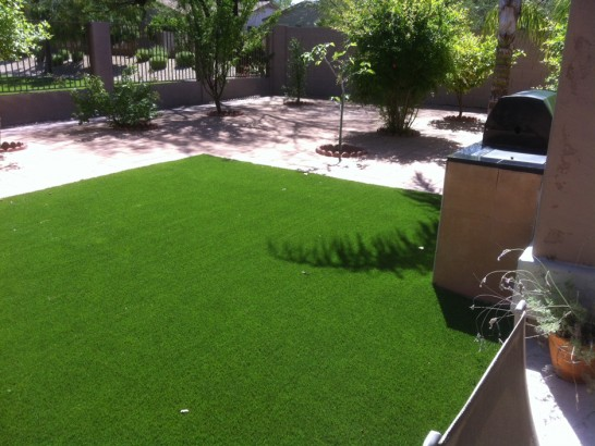 Artificial Grass Photos: Synthetic Pet Turf Chevy Chase Section Five Maryland Installation