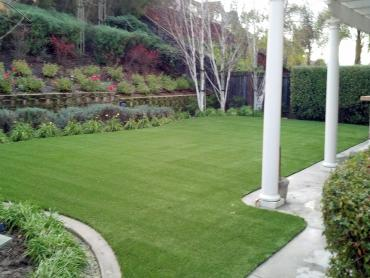 Artificial Grass Photos: Synthetic Pet Turf Fulton Maryland for Dogs  Front Yard