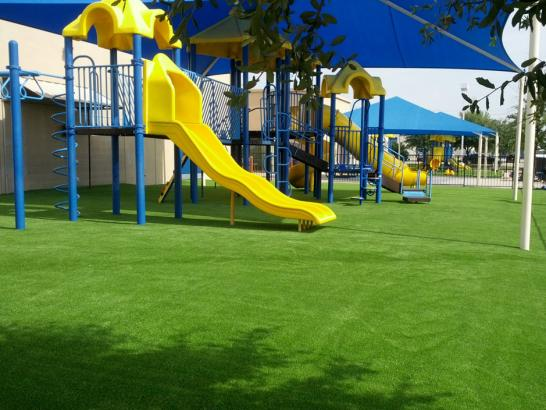 Artificial Grass Photos: Synthetic Turf Butlertown Maryland  Kids Safe  Front Yard