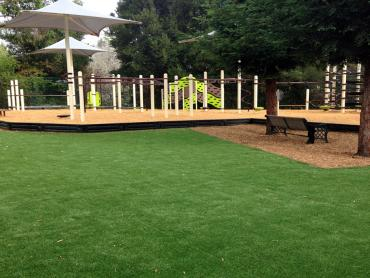 Artificial Grass Photos: Synthetic Turf Georgetown Maryland  Kids Safe  Back Yard